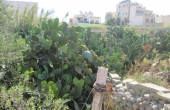 ge293, MALTA Gozo Qala